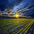 A Short Piece Of Time by Phil Koch