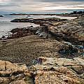 A Shot Of An Early Morning Aquidneck Island Newport Ri by Alex Grichenko