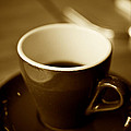 A Simple Cup In Sepia by Argun Tekant