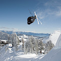 A Skier Doing A Front Flip Into Powder by Venture Media Group