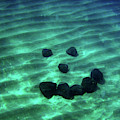 A Smiley Face Formed By Large Boulders by Elyse Butler