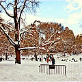 A Snow Day In Central Park by Madeline Ellis