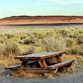 A Solitary Wooden Picnic Bench by Ron Koeberer