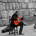 A Splash Of Flamenco  by Andrea Mazzocchetti
