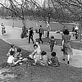 A Spring Day In Central Park by Underwood Archives