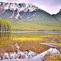 A Still Day At Buck Lake by Tara Turner