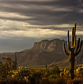 A Stormy Evening In The Superstitions  by Saija  Lehtonen