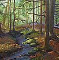 A Stream Of Light by Alison Barrett Kent