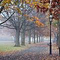 A Stroll In Salem Fog by Jeff Folger
