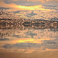 A Subtle Winter by Tara Turner
