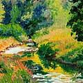 A Summer Brook by Keith Burgess