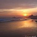 A Swift Sunset by Amy Martira
