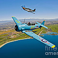 A T-6 Texan And P-51d Mustang In Flight by Scott Germain