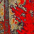 A Touch Of Autumn Abstract Vii by David Patterson