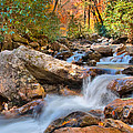 A Touch Of Autumn At Skinny Dip Falls by Lynn Bauer