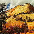 A Tree And Orange Hill by Jeff Swan