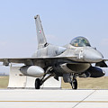 A United Arab Emirates Air Force F-16e by Daniele Faccioli