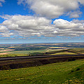 A View From Cabbage Hill by Robert Bales