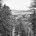 A View From Estes Park by Guy Whiteley
