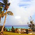 A View Of Bermuda by Dora Sofia Caputo Photographic Design and Fine Art