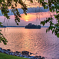 A View To A Sunset by Lynne Jenkins