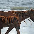 A Walk At The Beach by Karen Kluglein