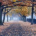 A Walk In Salem Fog by Jeff Folger