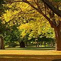 A Walk In The Park by Jeffery L Bowers