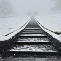A Walk Into The Fog by Don Schwartz