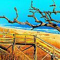A Walk On Atlantic Beach by Mj Carbo