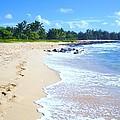 A Walk On The Beach  by Stephanie Callsen