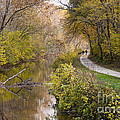 A Walk On The C And O Canal Towpath In Maryland In Autumn by William Kuta