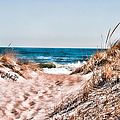 A Walk Out To The Water by Jeff Folger