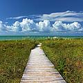 A Walk To The Beach On Sanibel by Jeff Breiman