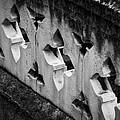 A Wall Between Gardens by Christi Kraft