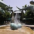A Water Fountain With Dinosaur Eggs And Dinsosaurs In Universal Studios by Ashish Agarwal