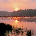 A Wetlands Sunrise by JC Findley