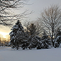 A White Winter's Morning by Catie Canetti