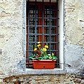 A Window In Tuscany by Mel Steinhauer