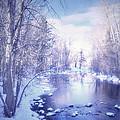 A Winter Reverie by Tara Turner