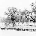 A Winter Scene by Brothers Beerens