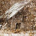 A Winter Shed by Edward Peterson