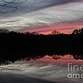 A Christmas Winter Sunset by Donna Brown