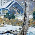 A Winter Walk In The Park by Sandra Harris