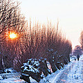 A Winter Wonderland Walk by Casper Cammeraat