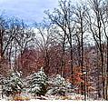 A Winters Scene by Frozen in Time Fine Art Photography