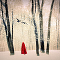 A Winters Tale by Jessica Jenney