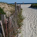 A Wonderful Beachday On Cape Cod by Christiane Schulze Art And Photography