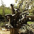 A Wooden Sculpture Inside A Garden by Ashish Agarwal