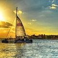 A Yacht Of Fun by Debbi Granruth
